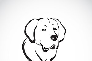 Vector of golden retriever.
