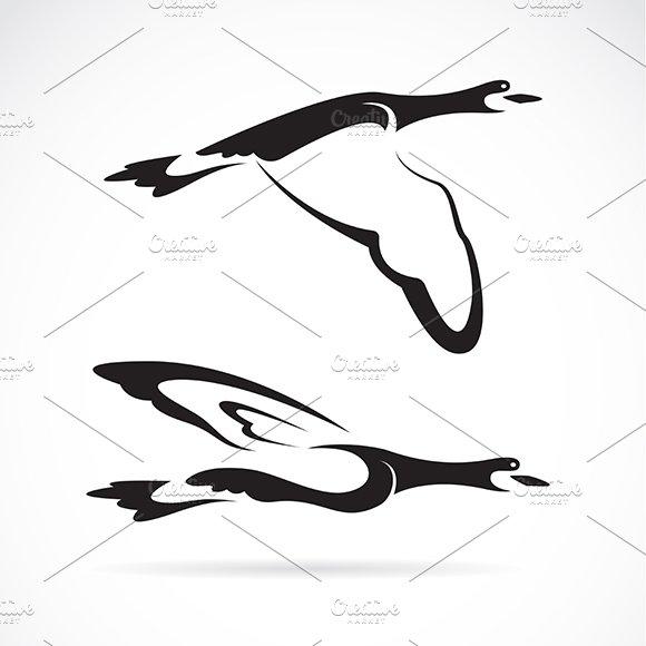 Vector of a flying wild duck.