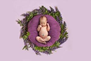 Newborn baby girl with purple flower