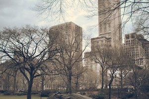New York - Central Park #01