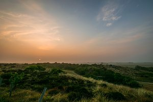 Foggy colorful sun dawn