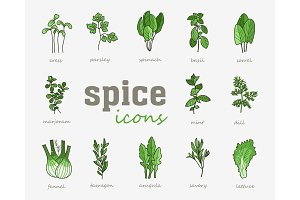 Greenery vector icon set. Vegetable green leaves