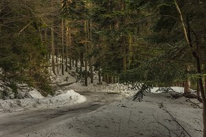 Mountain road covered with snow