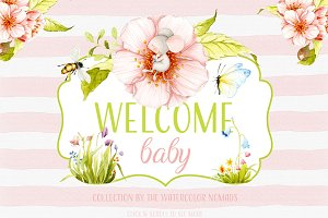 Welcome Baby - watercolor flower set