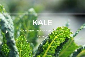 Kale set