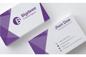 Bigdeee Clean Business Card vol2