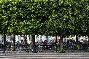 Parked Bikes, Copenhagen