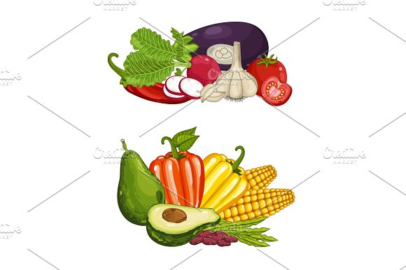Fresh organic vegetable isolated composition set in Illustrations