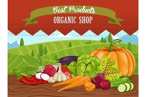 Organic shop banner with vegetable