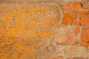 Stone Wall / old