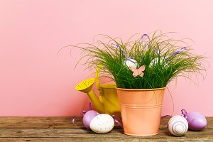 Easter or Spring Concept. Pink Color