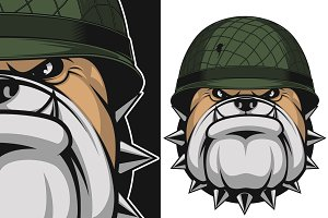 Bulldog in a soldier's helmet
