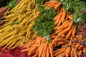 Display of carrots at the market