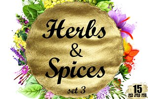 Herbs and Spices digital art - 15pcs