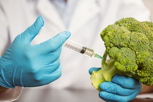 Food scientist injecting head of broccoli