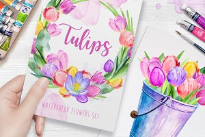 Tulips. Watercolor illustrations.