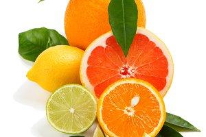 Citrus collection, close up