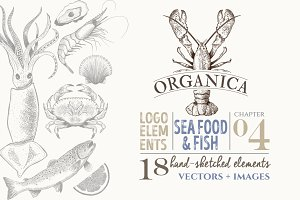 ORGANIC LOGO ELEMENTS  SEA FOOD FISH