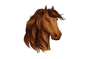 Head of brown horse foal or stud vector sketch
