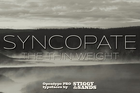 Syncopate Pro Thin