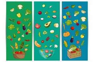Organic farm food flyer set with vegetable