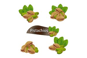 Pistachios kernel in nutshell with leaves set