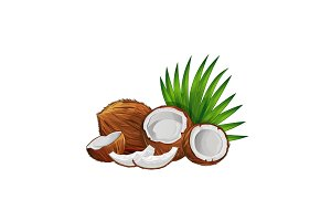 Coconut with half and green palm leaves set