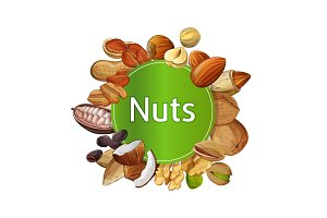 Various nuts round isolated composition