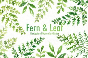 Fern & Leaf Watercolor clipart