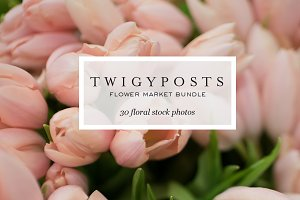 Ultimate Floral Stock Photo Bundle