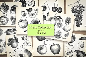 Fruit Collection / part 1