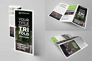 tri-fold brochure green
