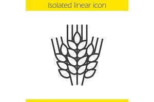 Wheat ears icon. Vector