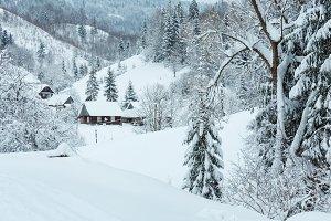 Winter Carpathian Mountains.