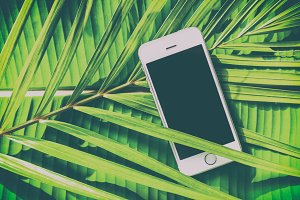 Smartphone on tropical background