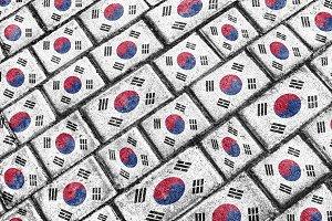 South Korea Grunge Flag Pattern