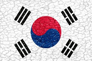 South Korea Grunge Style Flag