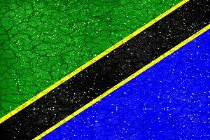 Grunge Style Tanzania National Flag