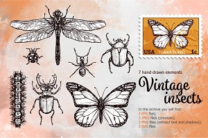 Vintage Insects Set