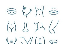 Human body parts vector line icons