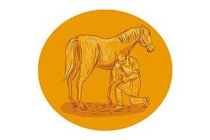 Farrier Placing Shoe on Horse Hoof