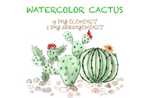 Watercolor and Ink Cactus