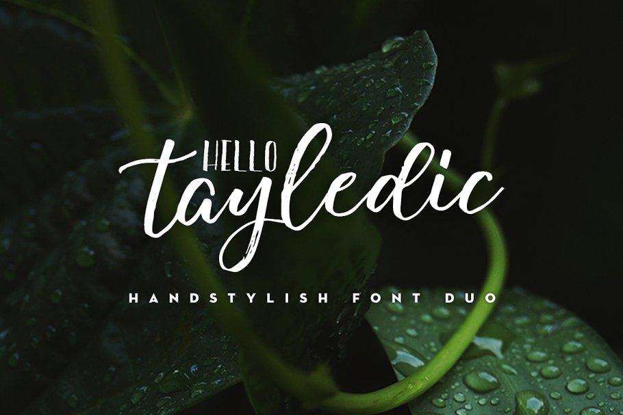 afac9b52641 Hello Tayledic Handstylish Font Duo ~ Script Fonts ~ Creative Market