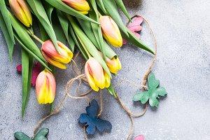 Beautiful yellow orange tulips