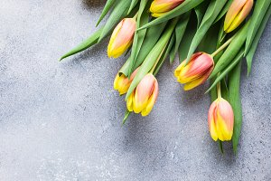 Beautiful yellow orange tulips