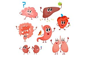 Cute and funny healthy human organ characters