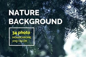 34 Nature background photo