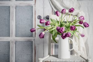 Tulips on white chair
