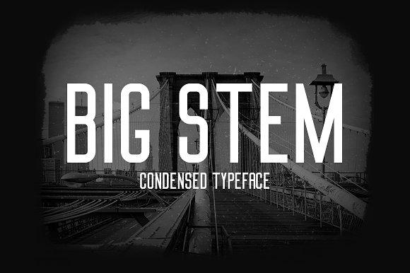 Big Stem Type Family