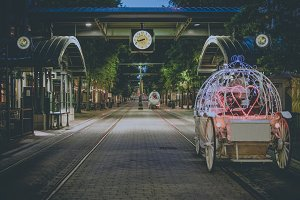 Horse and carriage on brick street